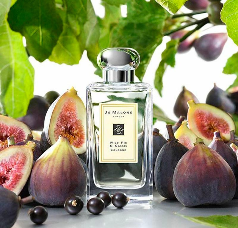 Wild Fig and Cassis Jo Malone London