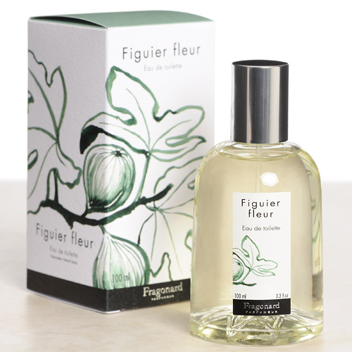 Figuier Fleur Fragonard